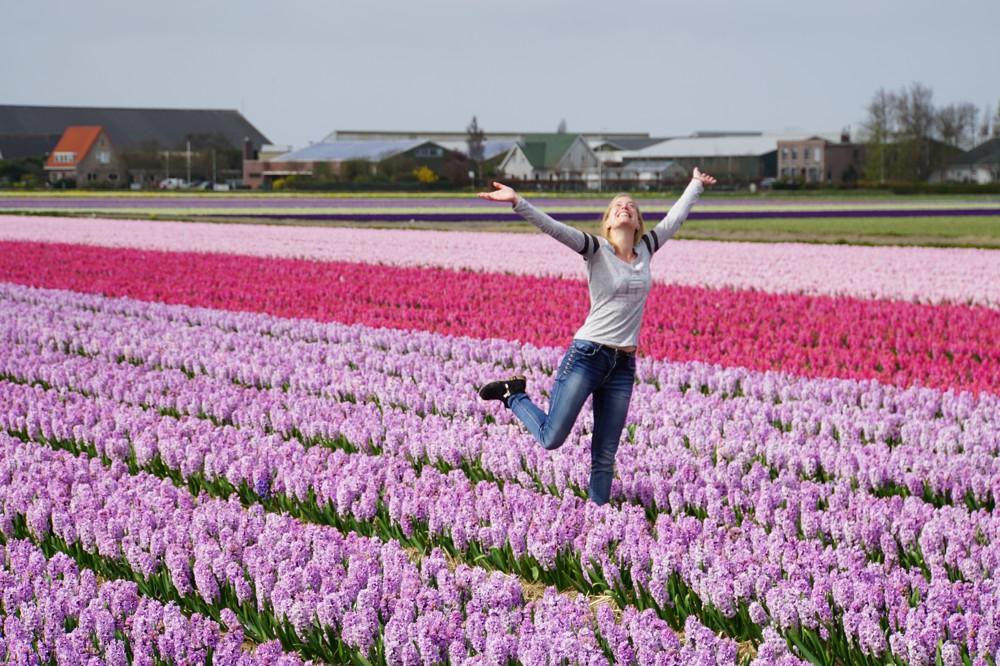 Tulpenvelden Lisse 001