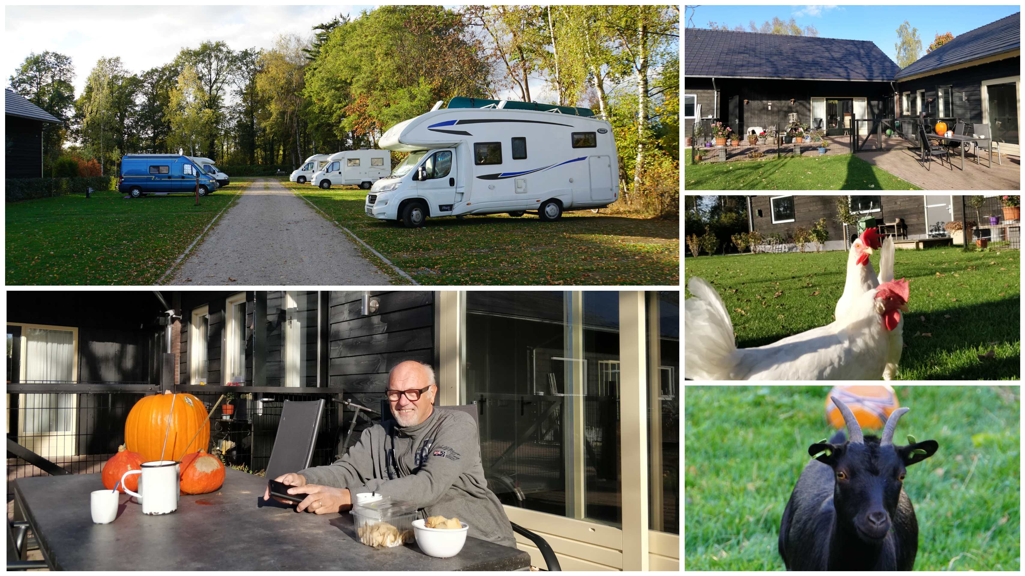 CamperCamping de Ravenhorst