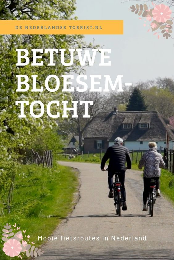 Mooie fietsroute langs de Linge en de bloesems in de Betuwe. Binnenkort kun je hier verse appels, peren en kersen krijgen!
