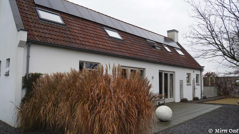 Vakantiehuizen-Ruigenhoek-006