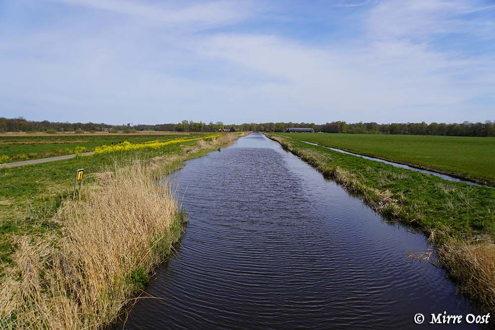 Rondje-Naardermeer-006