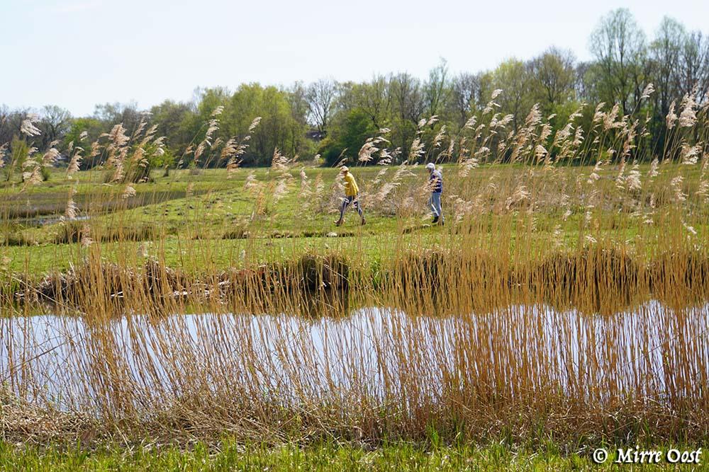 Rondje-Naardermeer-033