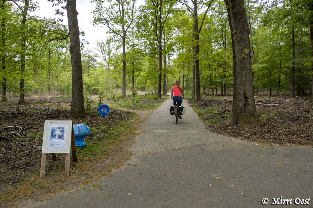 Fietsen op de Hoge Veluwe fietsen-88
