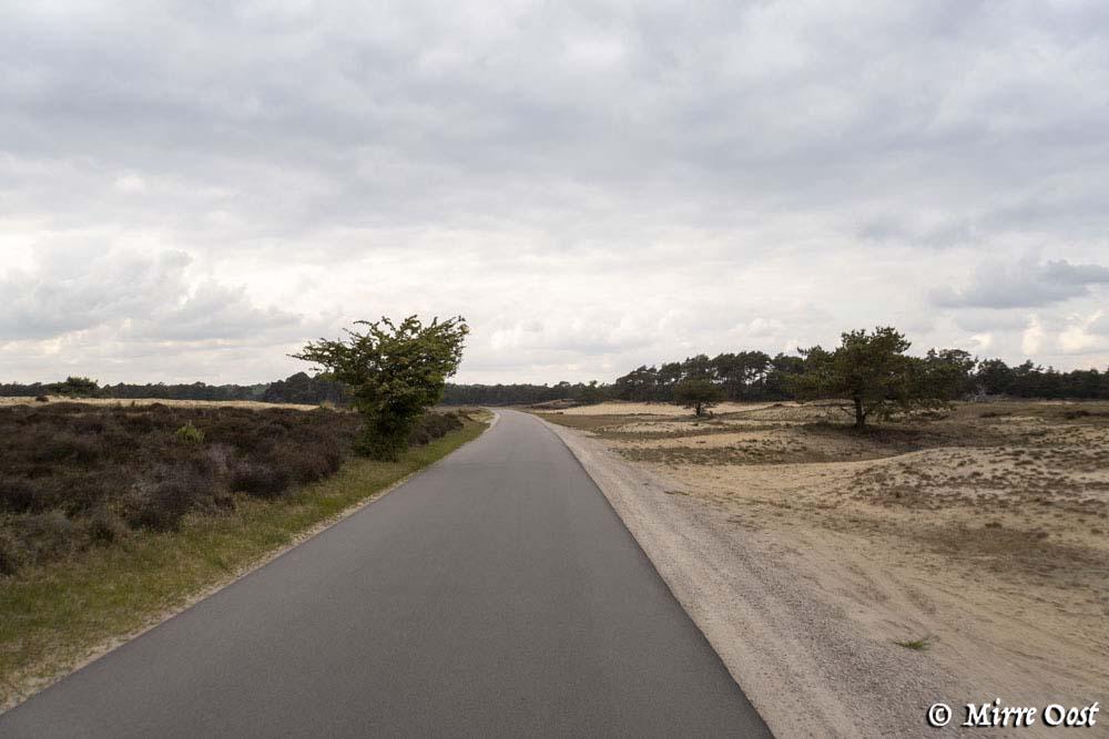 Hoge-Veluwe-park-181