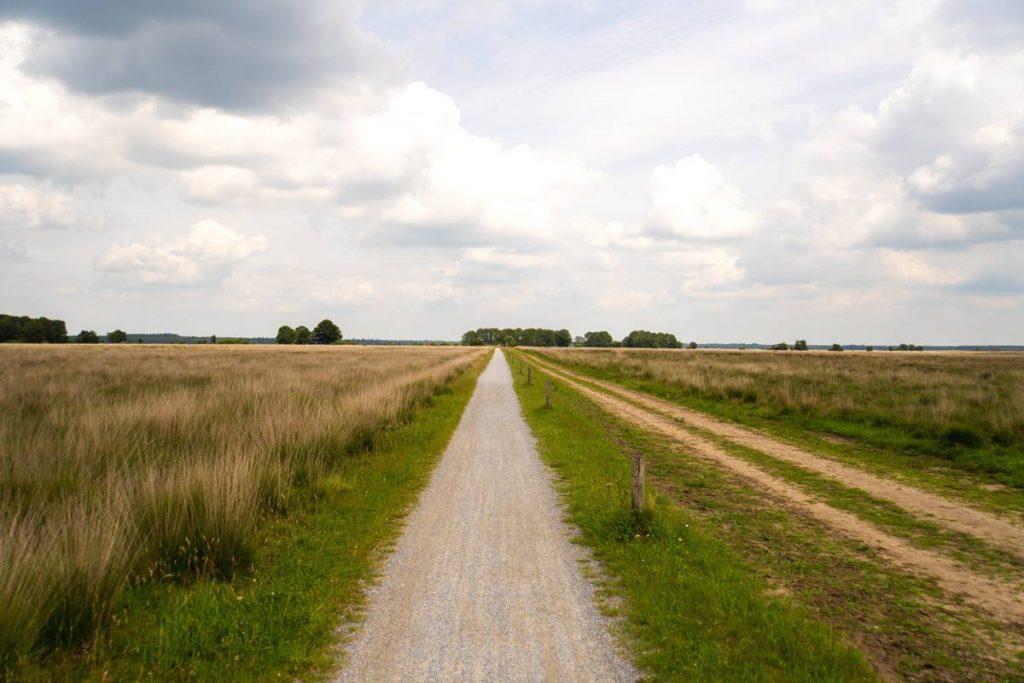 Fietsroute-Dwingelderveld-35