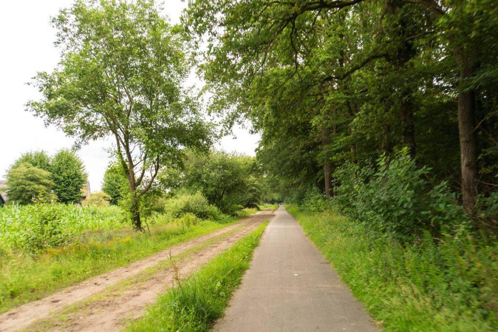 Fietsroute-Dwingelderveld-79
