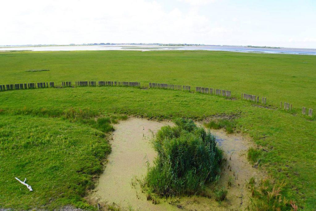 Toerist in eigen land: Nationaal-Park-Lauwersmeer