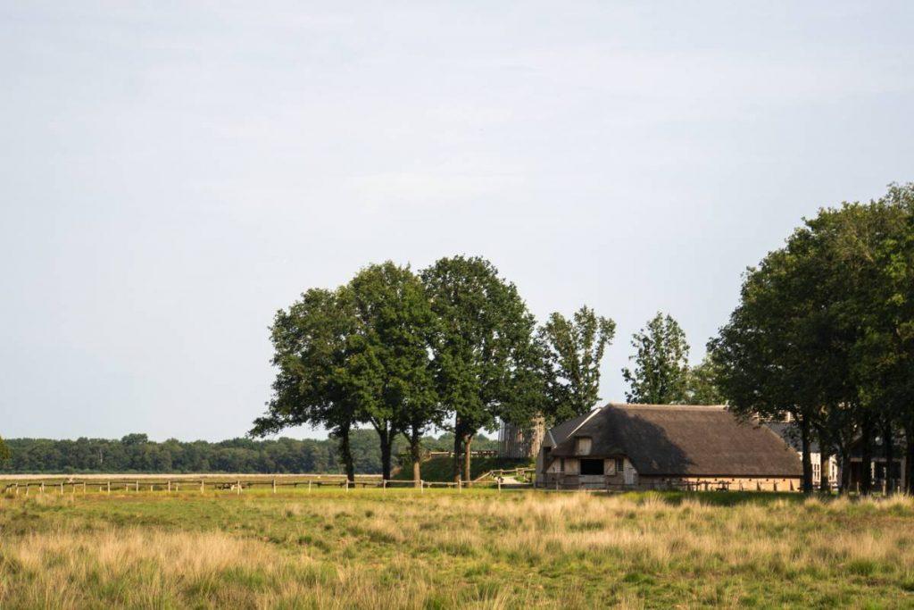 Schaapskooi-Ruinen-Dwingelderveld-127