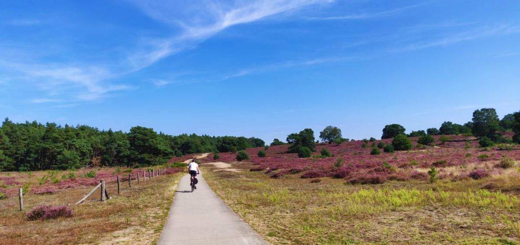 Posbank fietsen: Fietsroute over de Posbank.