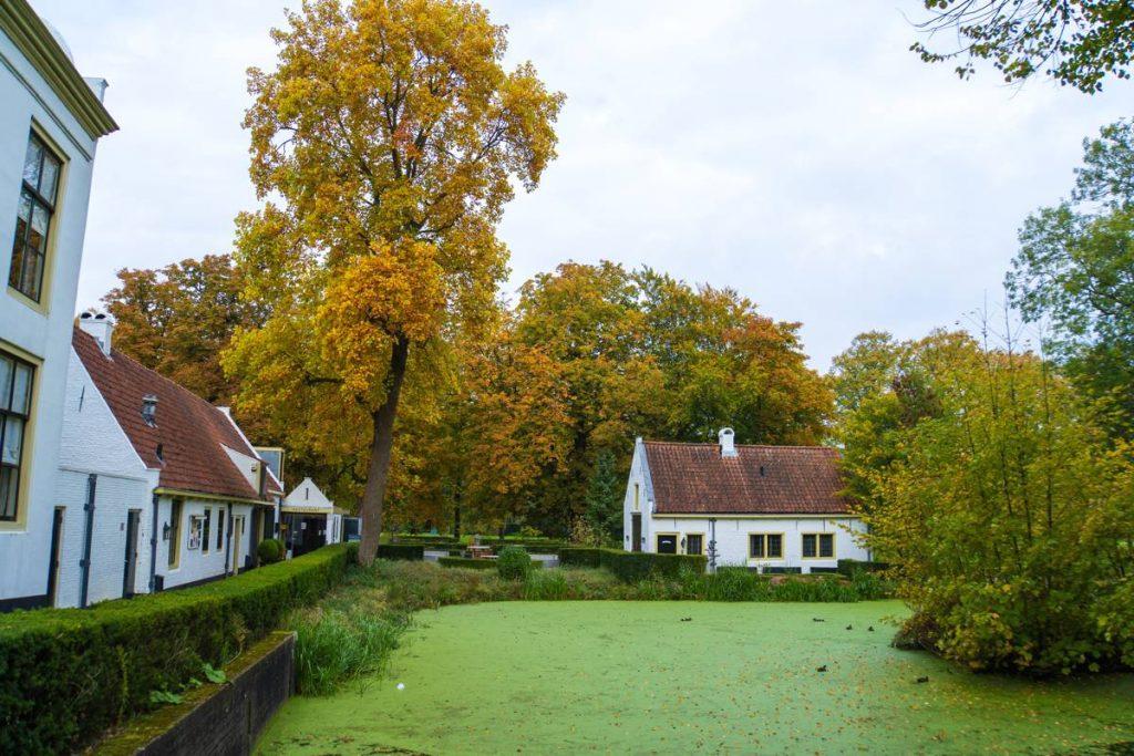 Eiland-IJsselmonde-32
