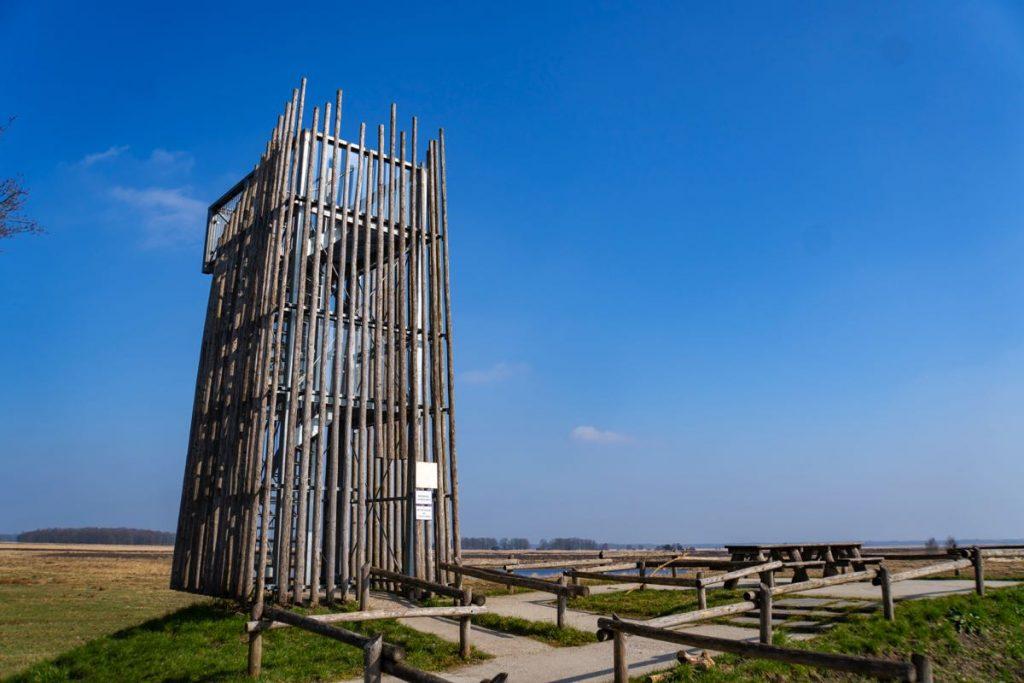 Uitkijktoren Dwingelderveld 51