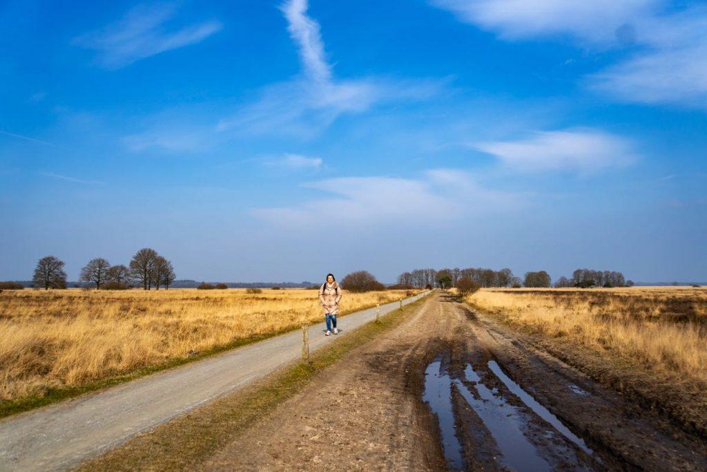 Wandelen-Dwingelderveld-113