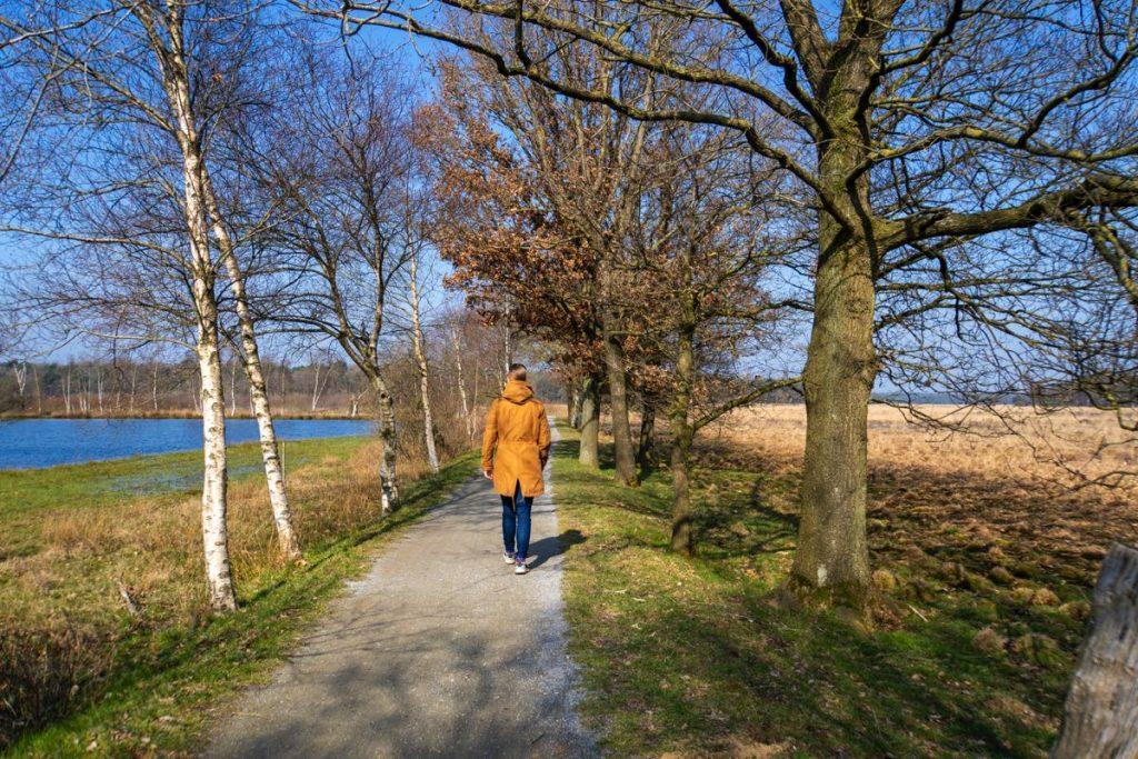 Wandelen Dwingelderveld 56