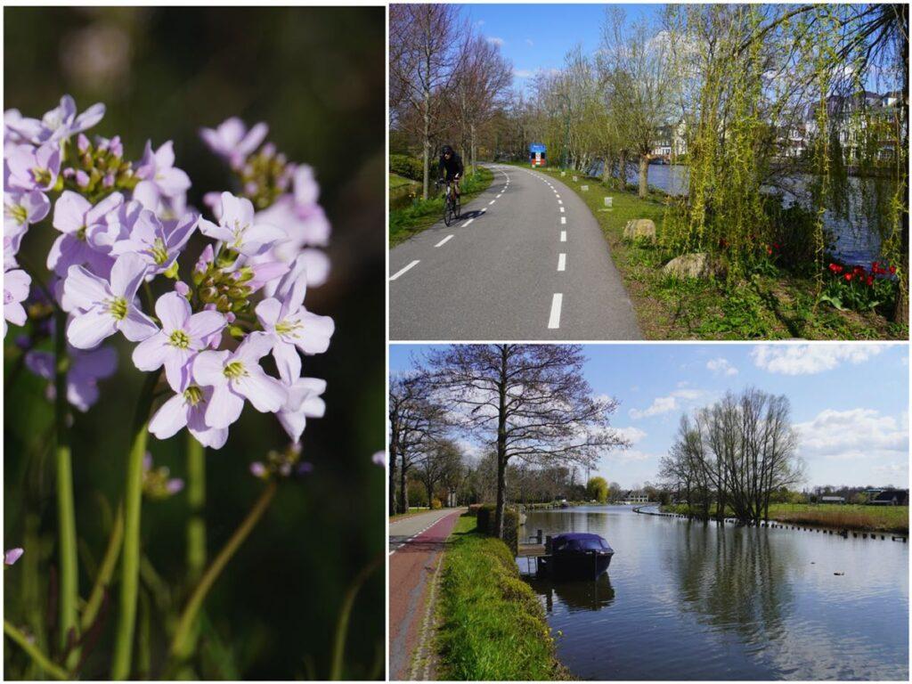 Fietsroute-Loosdrechtse-plassen-C003