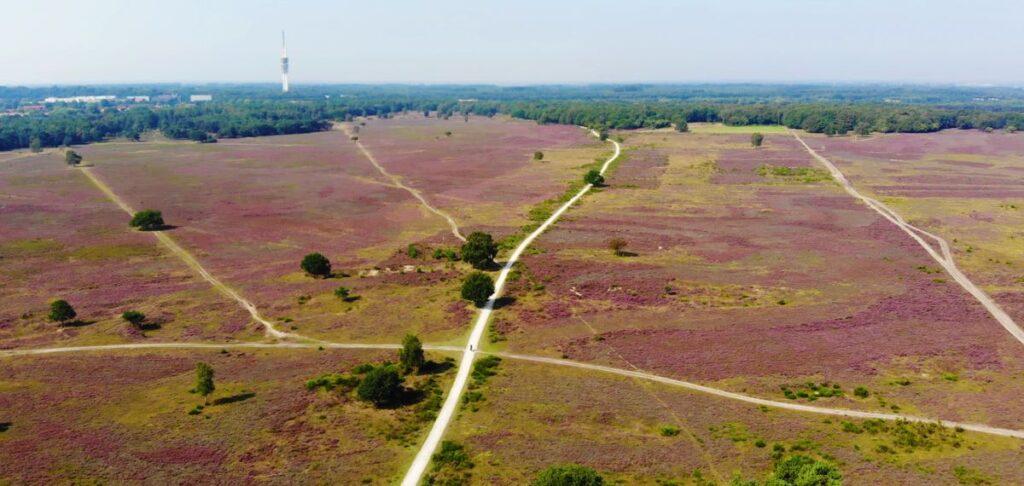 De Heide rondom Hilversum: De Bussumerheide